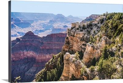 Trees Along Cliff Side, Grand Canyon National Park, Arizona