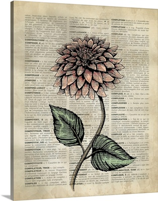 Vintage Dictionary Art: Dahlia