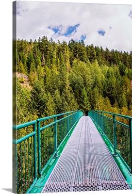 Whistler Bungee Bridge, Whistler, British Columbia, Canada