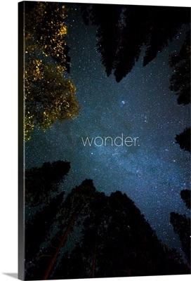 Wonder - Zen