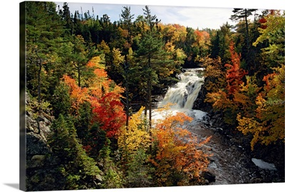 Waterfall in between fall colors in a forest
