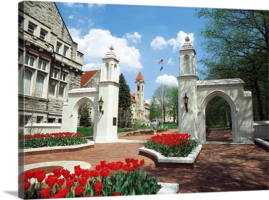 Indiana University Photographs The Campus Gates with Red Tulips