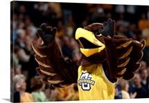 Marquette Photographs Golden Eagle Spirit