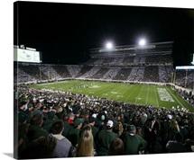 Michigan State and Oregon at Spartan Stadium