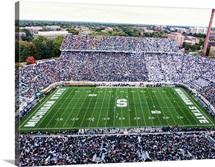 Michigan State: Spartan Stadium