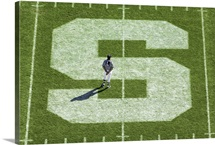 MSU Pictures Block S on the Football Field