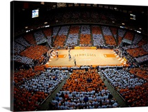 Tennessee Volunteers: Thompson-Boling Arena