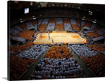 UT Photographs Fans Form Checkerboard