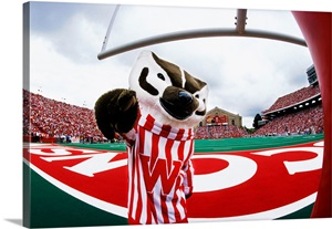 Uw Photograph Bucky Badger On Game Day Wall Art Canvas