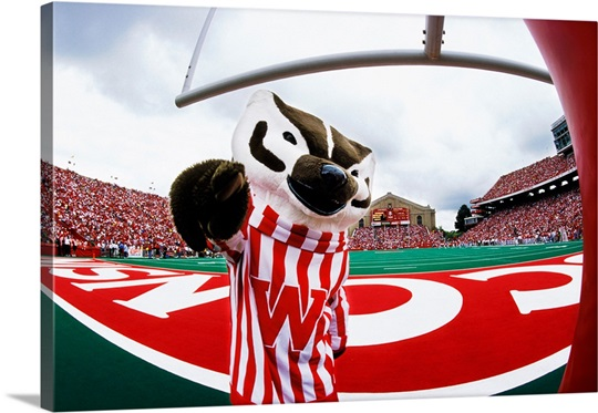 UW Photograph Bucky Badger on Game Day