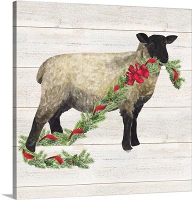 Christmas on the Farm V Sheep