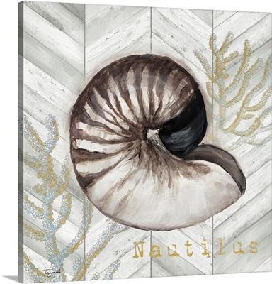 Gray Gold Chevron Nautilus Shell