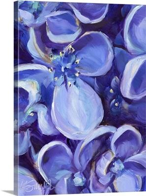 Lavender Floral Close Up