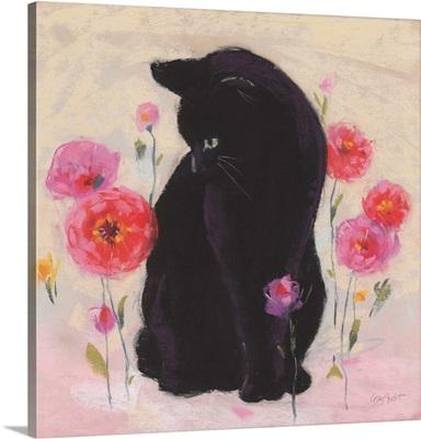 Nina The Cat 01