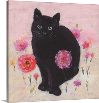 Nina The Cat 02