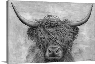 Norwegian Bison