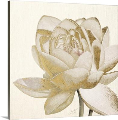 Vintage Lotus Cream II