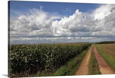 Agricultural landscape at Saargau near Kirf, Rhineland-Palatinate, Germany