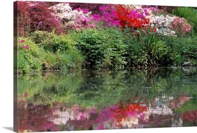 Azaleas in bloom reflected in still water
