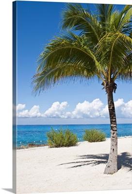 Beach at Chankanaab Park, Isla de Cozumel, Quintana Roo, Mexico