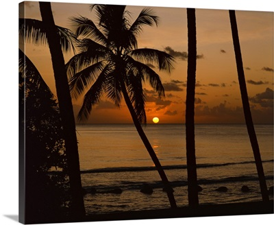 Beach at sunset, Barbados, West Indies, Caribbean, Central America