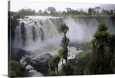 Blue Nile Falls, near Lake Tana, Gondar region, Ethiopia, Africa