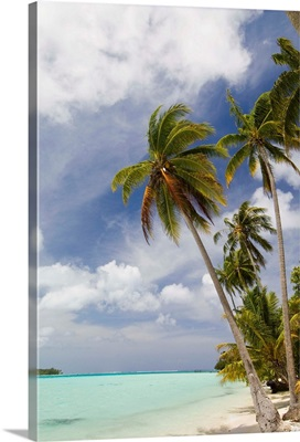 Bora-Bora, Leeward group, Society Islands, French Polynesia, Pacific Islands