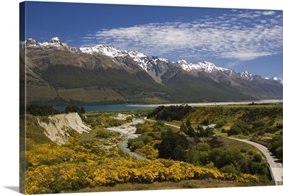 Bright summer flowers and snow capped mountains, South Island, New Zealand