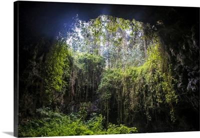 Cave System In The Virunga National Park, Rwanda