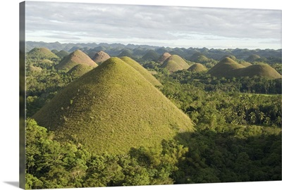 Chocolate Hills, conical hills in tropical limestone karst, Carmen, Bohol, Philippines