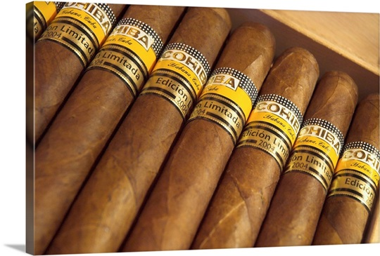 Close Up Of Limited Edition Cigars In A Box Cohiba
