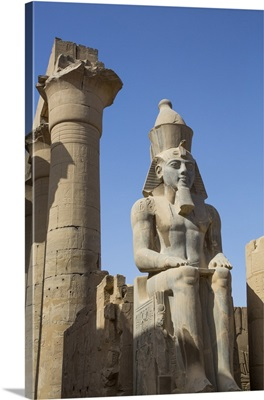 Colossus Of Ramses II, Court Of Ramses II, Luxor Temple, Luxor, Thebes, Egypt, Africa