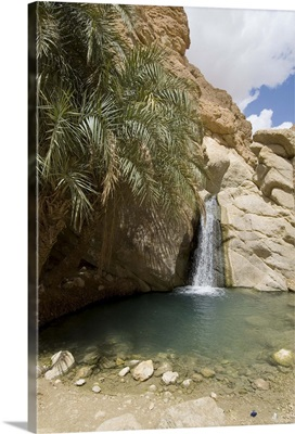 Desert oasis, Chebika, Tunisia, North Africa, Africa