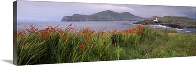 Doulus Bay and Doulus Head, Valentia island, Munster, Republic of Ireland