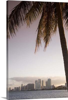 Downtown Miami skyline, Miami, Florida, USA