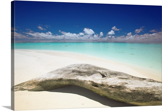 Driftwood On The Beach Maldives Indian Ocean Asia