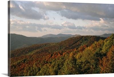 Earling morning landscape, Blue Ridge Parkway, North Carolina, USA