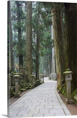 Entrance Path, Okunoin graveyard, Koya-san, Kansai, Honshu, Japan