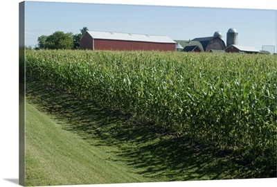 Farm, North Wood Park, Wisconsin