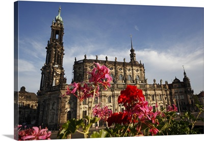 Geraniums in front of Hofkirche, Old Town, Dresden, Saxony, Germany