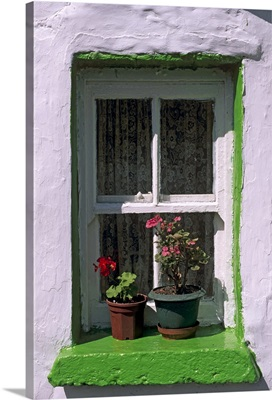 Green window in traditional house, Cashel, Munster, Republic of Ireland