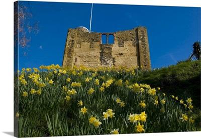 Guildford Castle, Guildford, Surrey, England, United Kingdom, Europe