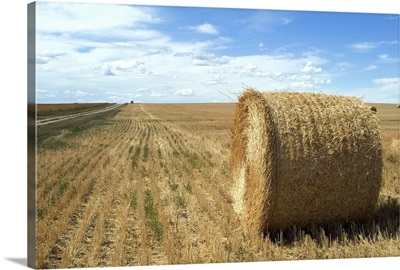 Haystacks, North Dakota