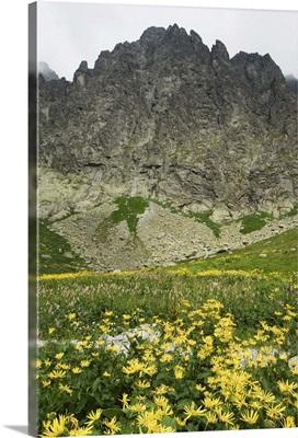 High Tatras Mountains, Tatra National Park, Slovakia