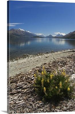 Lake Wakatipu near Queenstown, Otago, South Island, New Zealand