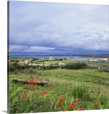 Landscape near Ardara, County Donegal, Ulster, Eire (Republic of Ireland)
