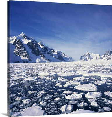 Loose pack ice in the sea, Antarctic Peninsula in the background, Antarctica