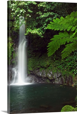 Malabsay Waterfall, Bicol, southeast Luzon, Philippines, Asia