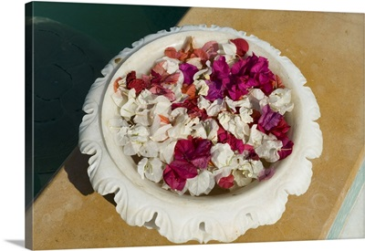 Marble bowl with floating flowers, Udai Vilas Palace, Rajasthan state, India