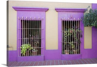 Nid Art Gallery, Old Town District, Mazatlan, Sinaloa State, Mexico